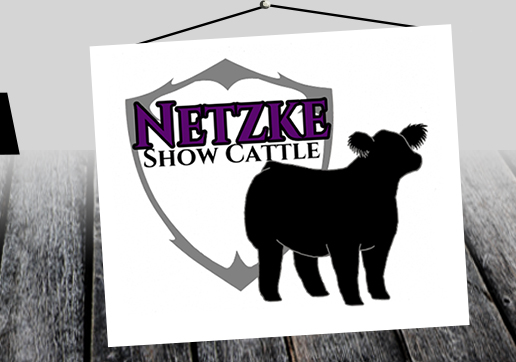 Netzke Show Cattle